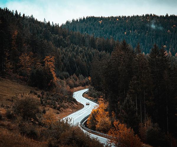 Start - Black Forest